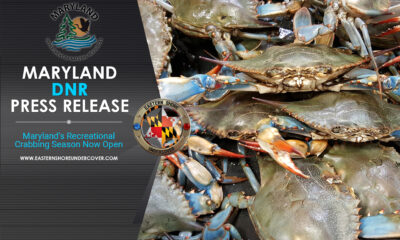 Maryland Crabbing Season