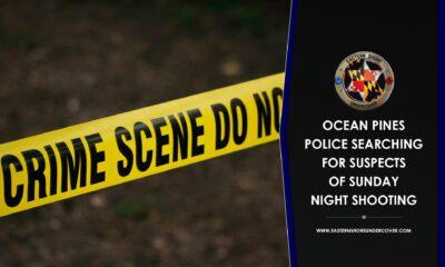 Ocean Pines Shooting