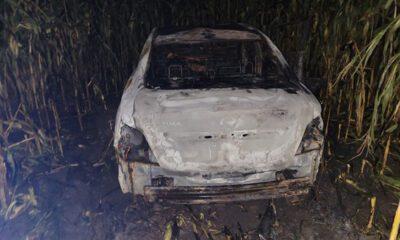 Vehicle Fire Toadvine Road